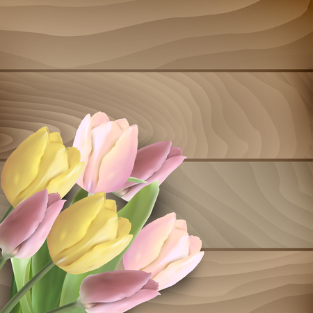 easter flowers: Beautiful tulips on wooden background