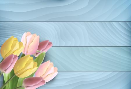 tulips isolated on white background: Tulips on blue wooden background