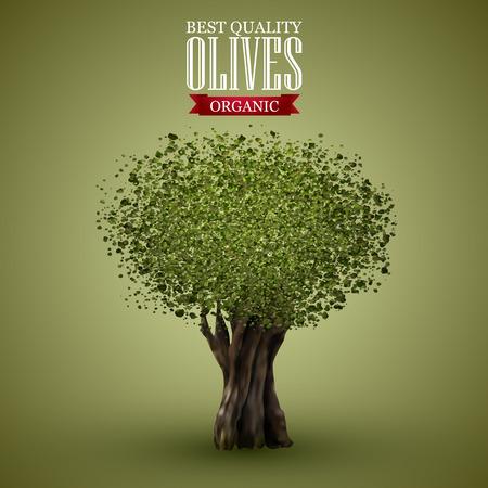 Olive tree on o green background. Illustration