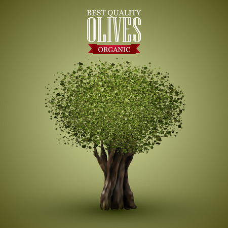 olivo su o sfondo verde.