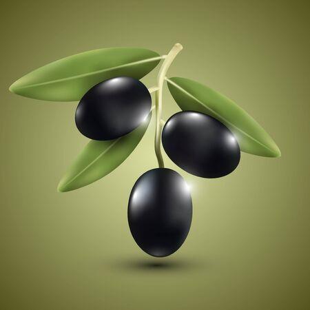 dark olive: Dark olive on a green background, vector illustration.