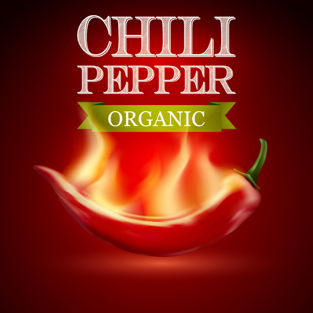 chilli sauce: Red hot chili pepper on a red background. Vector illustration. Illustration