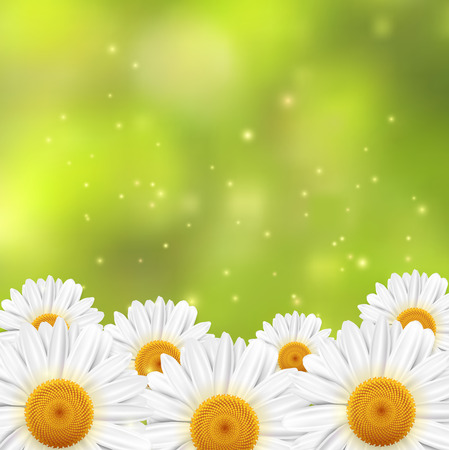 A field of small white flowers on a green blurred background,