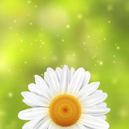 Daisy flower on a green blurred background with sparkles. illustration.