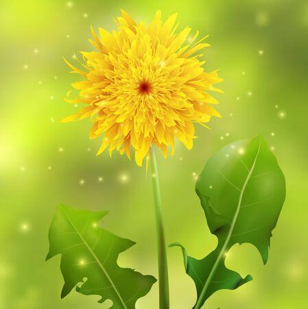 Dandelion on a green blurred background with sparkles, illustration.