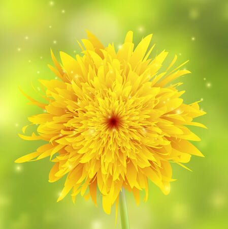 Dandelion closeup on a green blurred background with sparkles, illustration. Çizim