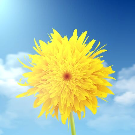 Dandelion closeup with a sky in the background.illustration. Illustration