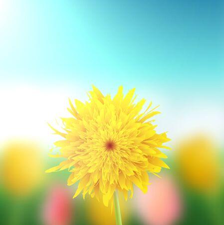 Dandelion on a blurred background, illustration.