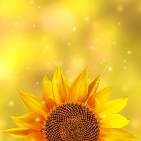 A single sunflower on a yellow background, illustration. Illustration