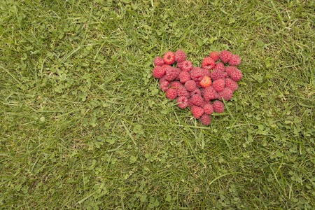 Heart, laid out on the grass raspberries Stock Photo - 15303617