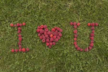 love confession: The raspberry love confession on the grass Stock Photo