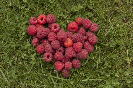 Heart, laid out on the grass raspberries Stock Photo