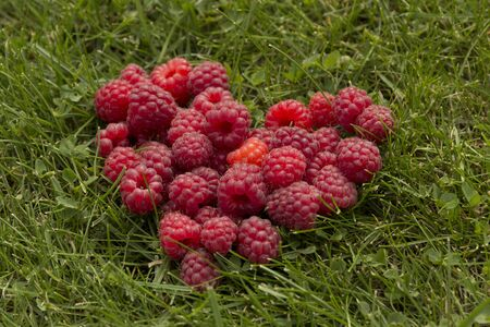 love confession: Heart, laid out on the grass raspberries Stock Photo