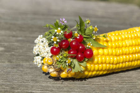 Thr bouquet of flowers and berries with corn Stock Photo - 15558772