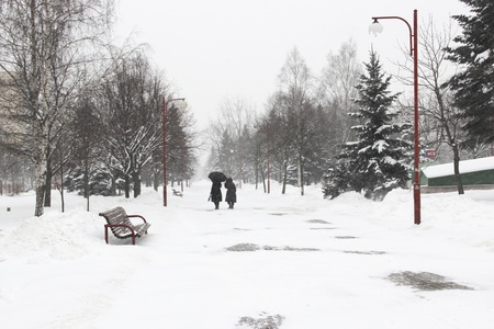 Two women walk through the park in the snow