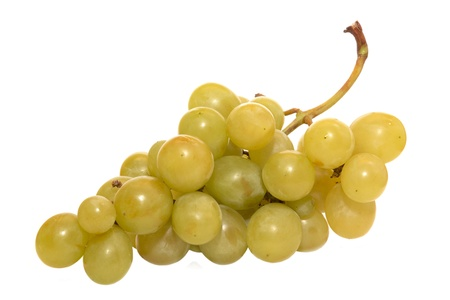 The branch of large juicy green grape vine