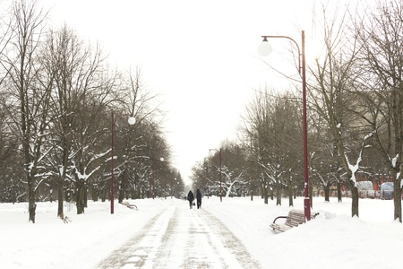 The sidewalk in the snow-covered park in winter Stock Photo