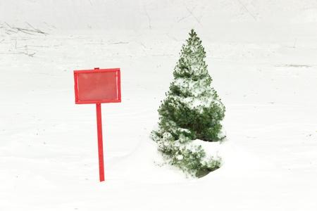 Petit thuya vert recouvert de neige pr�s de la plaque rouge Banque d'images