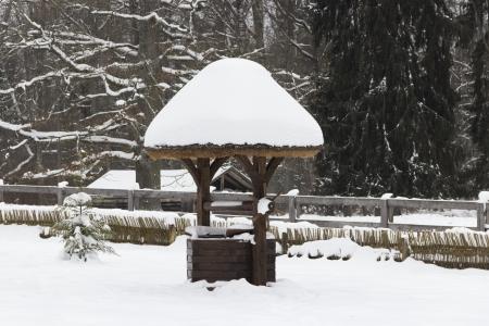 Couvert de neige et dans la for�t d'hiver color�
