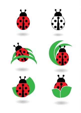 Ladybug icons set