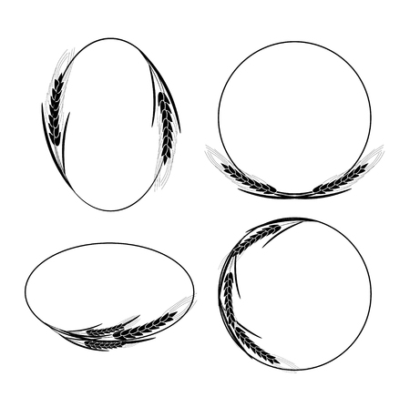 Frames with ears of wheat, barley or rye Illustration