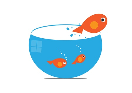 fish jumps vector illustration Stock Vector - 21897117