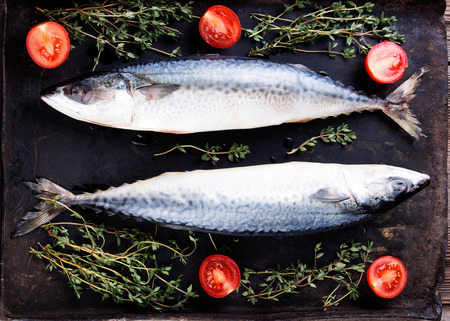 oven tray: Raw mackerel with thyme and tomato on old  black metallic oven tray Stock Photo