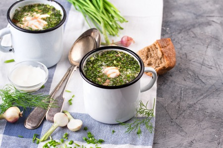 slavs: Traditional russian Cold Soup Okroshka with meat, vegetables and kvass serving size in enamel cup and raw ingredients on on grey stone table. Kvass is a traditional Slavic and Baltic fermented beverage commonly made from rye bread Stock Photo