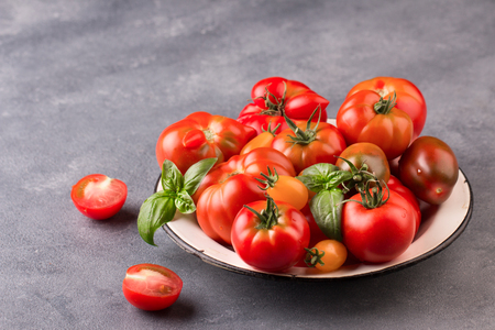 Fresh tomatoes in the foreground with copyspace Stock Photo