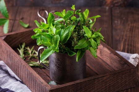 Fresh mint in tin cup on rustic wooden background Stock fotó