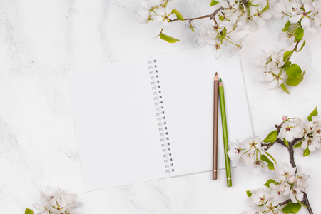 Spring flowers. Apple tree blossom with green leaves on white background. Clear notepad. Copy space