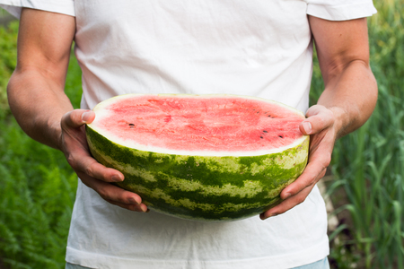 Watermelon in the hands of a man at a picnic