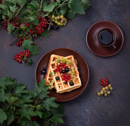 Plate of belgian waffles with currant berries on dark gray 写真素材