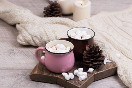 Cup of hot chocolate with cinnamon and marshmallows