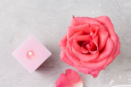 pink petals of roses and burning candles. Valentines day concept. Romantic still life. 版權商用圖片