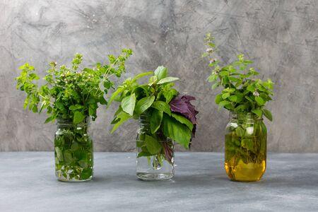 Aromatic herbs bunch, basil, mint and oregano in glass jar 版權商用圖片
