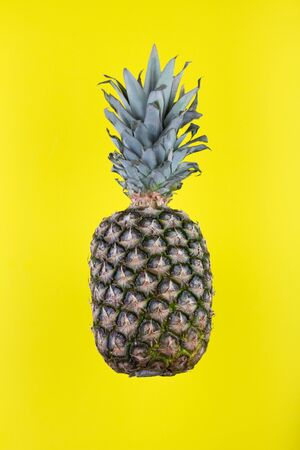 Ripe whole pineapple isolated on yellow background. Healthy lifestyle concept.