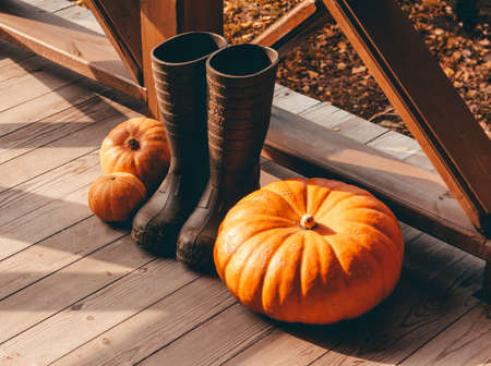 pumpkin and rubber rain boots on a wooden floor Standard-Bild