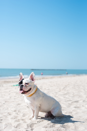 French happy face on the beach.