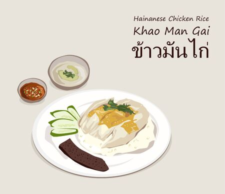 Hainanese chicken rice (Thai name is Khao Man Gai) vector. one of the most popular Thai street food.