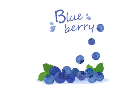 Blueberries vector isolated on white background. Summer fruits for a healthy lifestyle.Vector illustration for any design. Ilustração