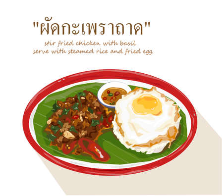 Stir-fried chicken or pork or meet with basil and chili served with steamed rice and a fried egg on the tray. Vector illustration food on white background.