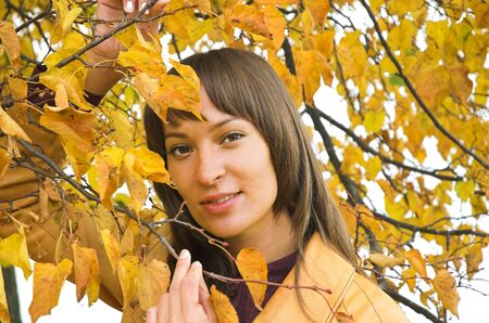 The beautiful girl in yellow  leaves Stock Photo - 2459787
