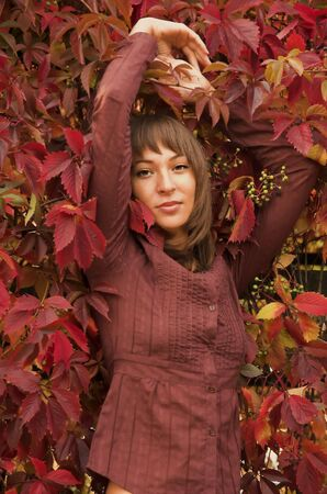 The beautiful girl in red leaves Stock Photo - 2582869