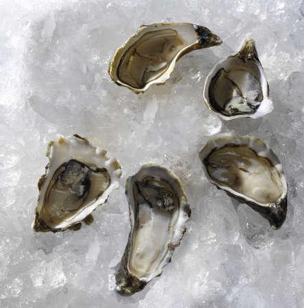 fresh oysters traditional wedding breakfast photo