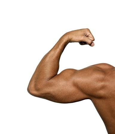 hombre fuerte: fuertes bíceps en un fondo blanco Foto de archivo
