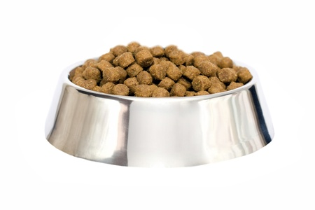dog food isolated photo