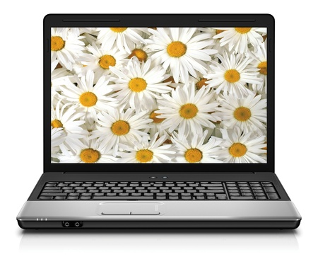 Silver Laptop Computer Showing Search For Flowers On Internet photo