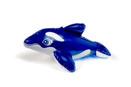 floatation: Studio photo of cute blue and white toy dolphin