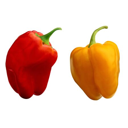 two sweet pepper isolated on white background Stock Photo - 14060406